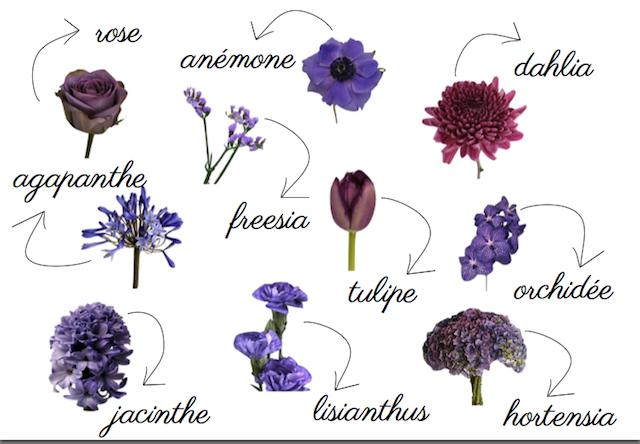 couleurs-fleurs-identité-visuelle-symbole