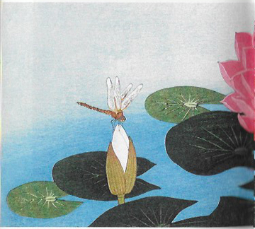 libellule-illustration-japon