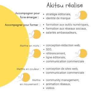 Panorama des services et produits d'Akitsudigital. Illustration